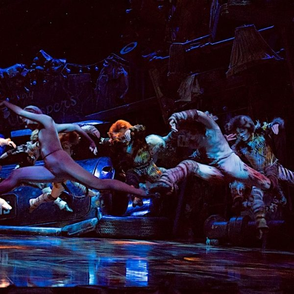 Australian cast of CATS 2016. Image by Oliver Toth